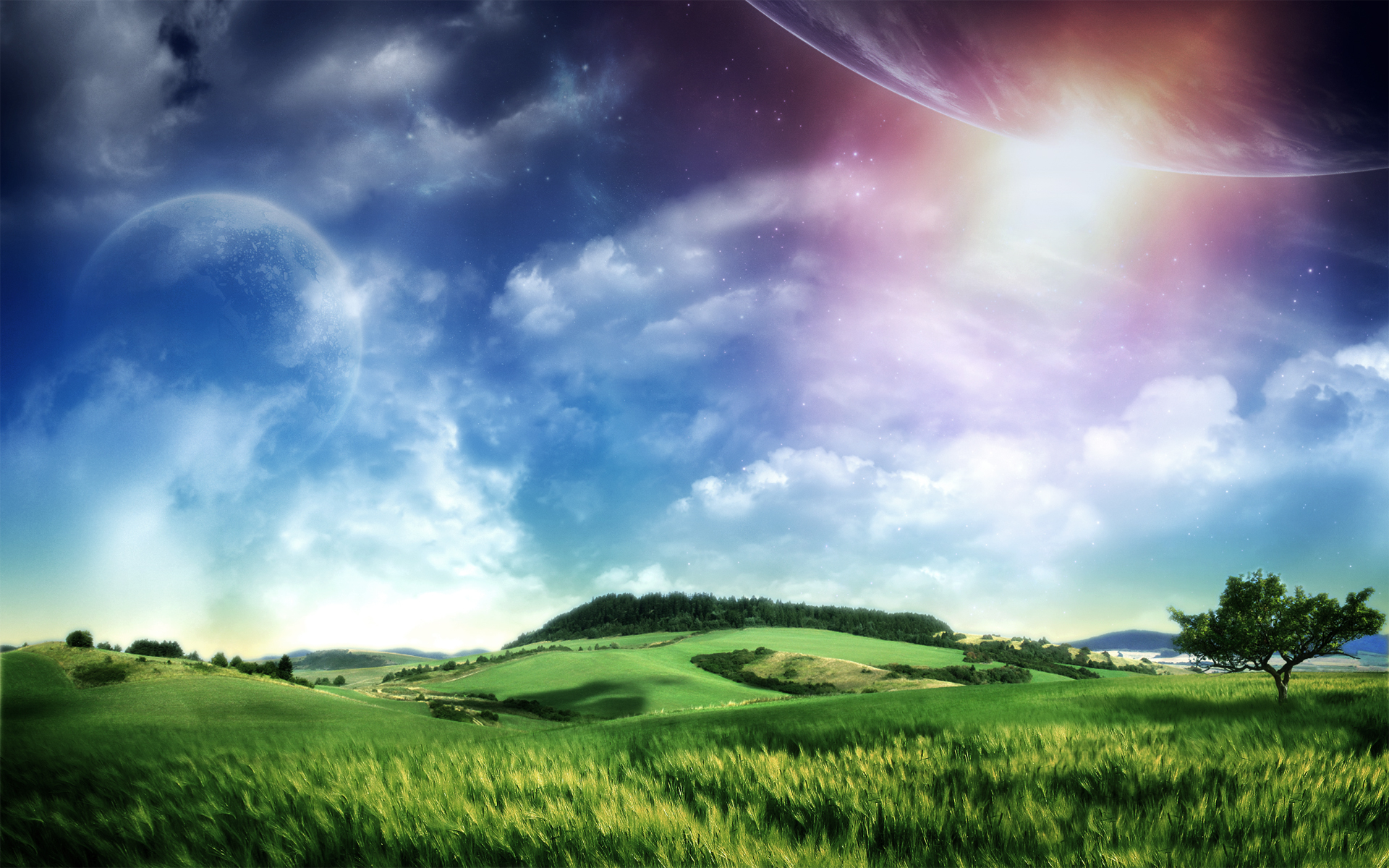 Earth - Field  Wallpaper