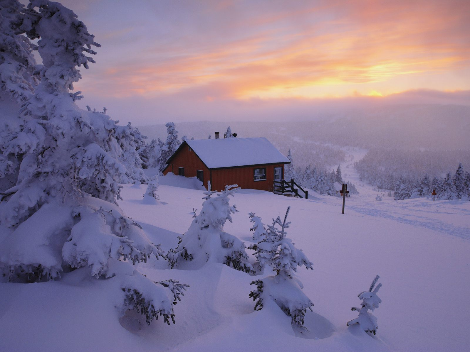 Winter Wallpaper And Background Image