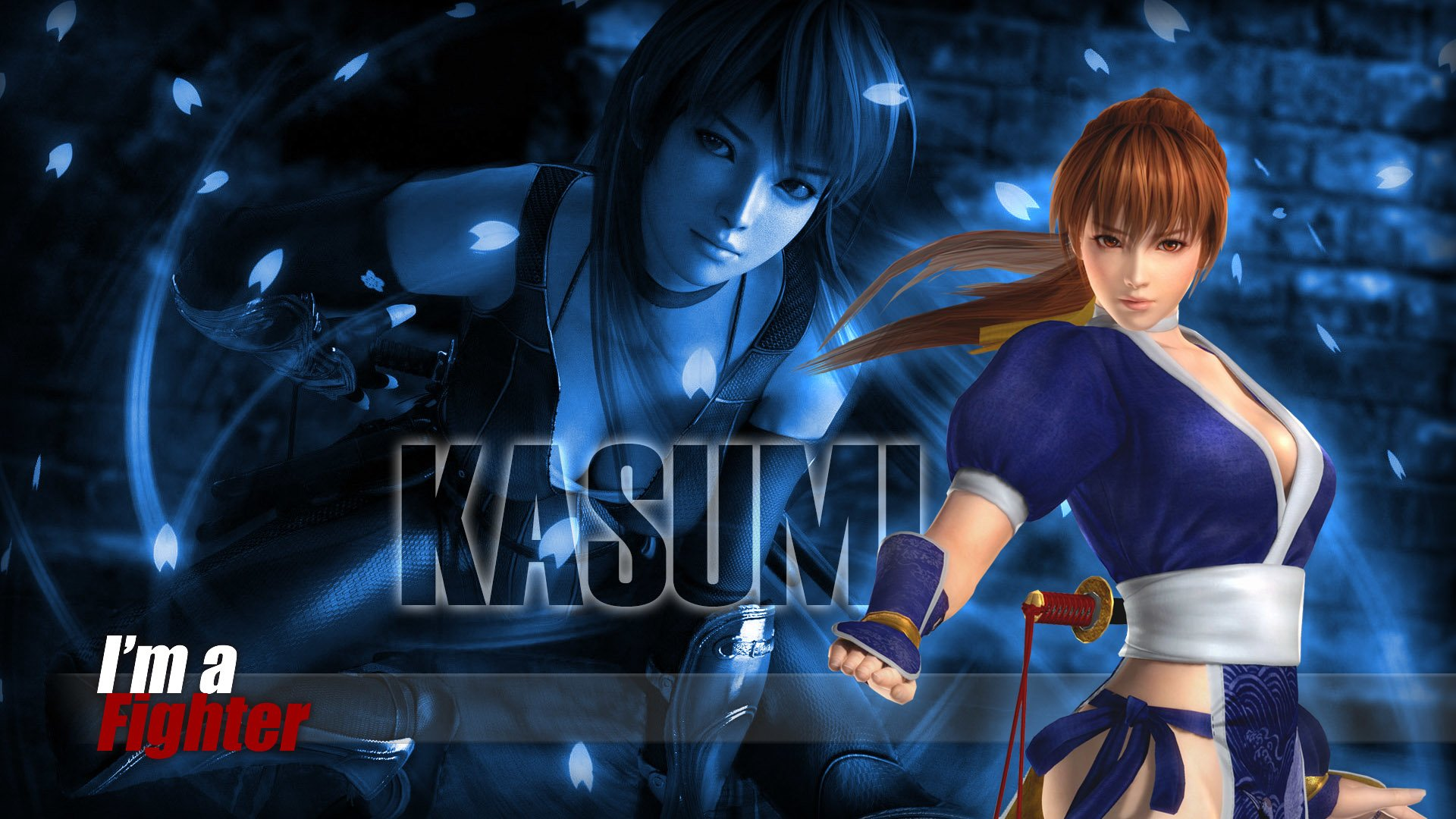 1 Dead Or Alive 5 Hd Wallpapers Background Images Wallpaper Abyss