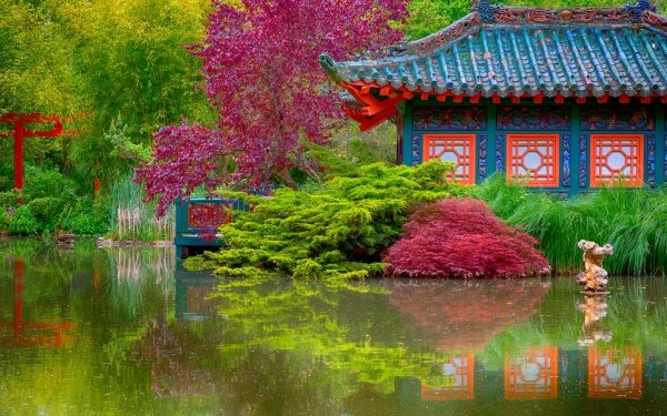 Man Made Japanese Garden Lodge Pond Tree Colorful HD Wallpaper | Background Image