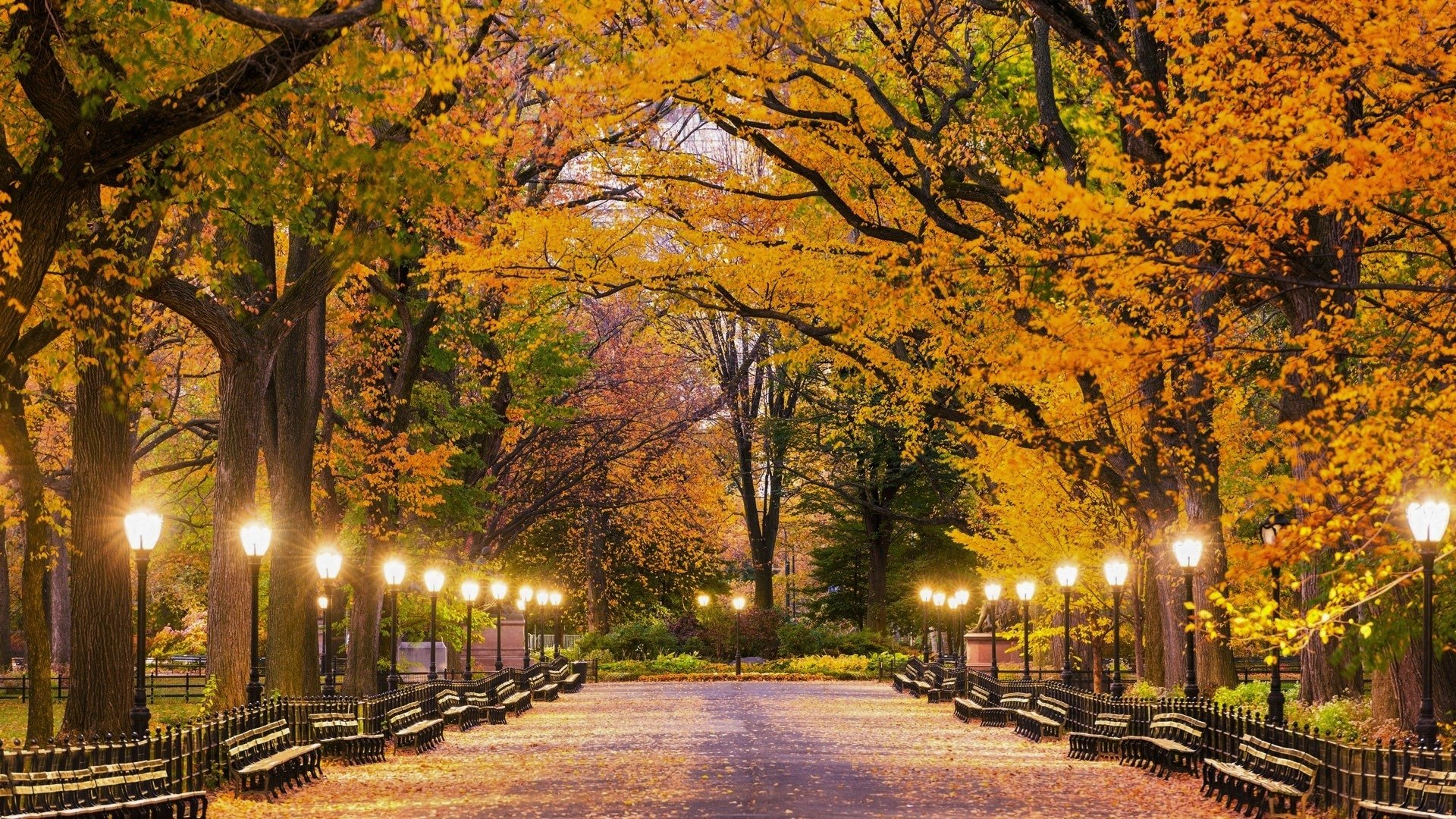 central park in autumn hd wallpaper | background image | 1920x1080