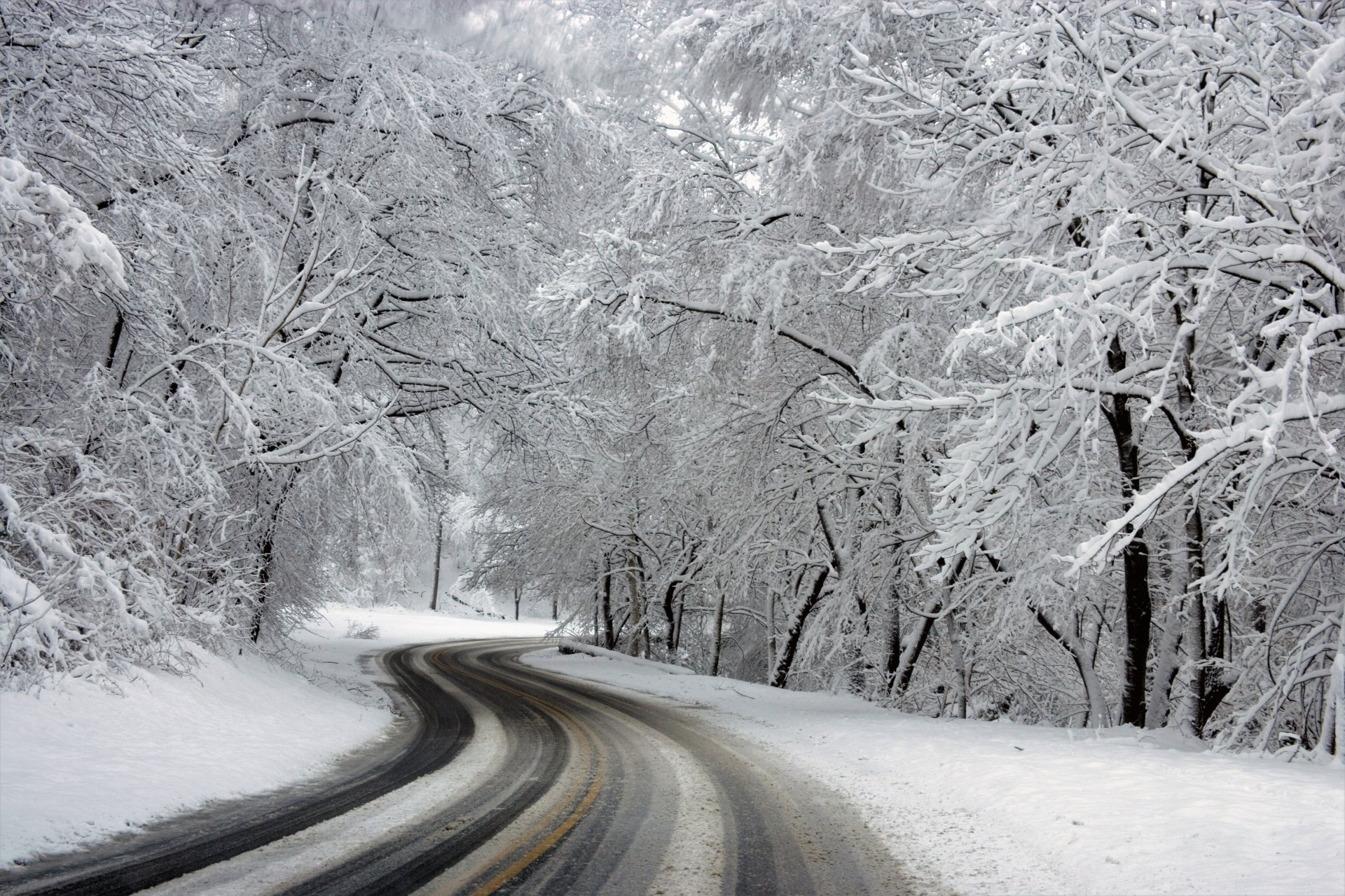 Man Made - Road  Earth Winter Snow Tree Forest Wallpaper