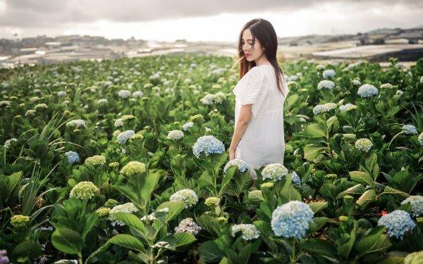 Women Asian Model Brunette Mood Depth Of Field White Dwarf Hydrangea Flower HD Wallpaper | Background Image