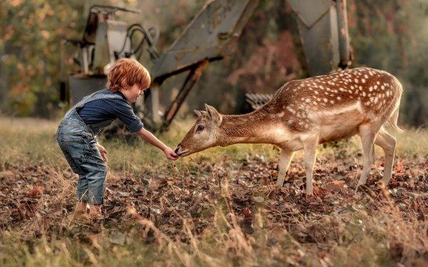Photography Child Little Boy Deer HD Wallpaper | Background Image