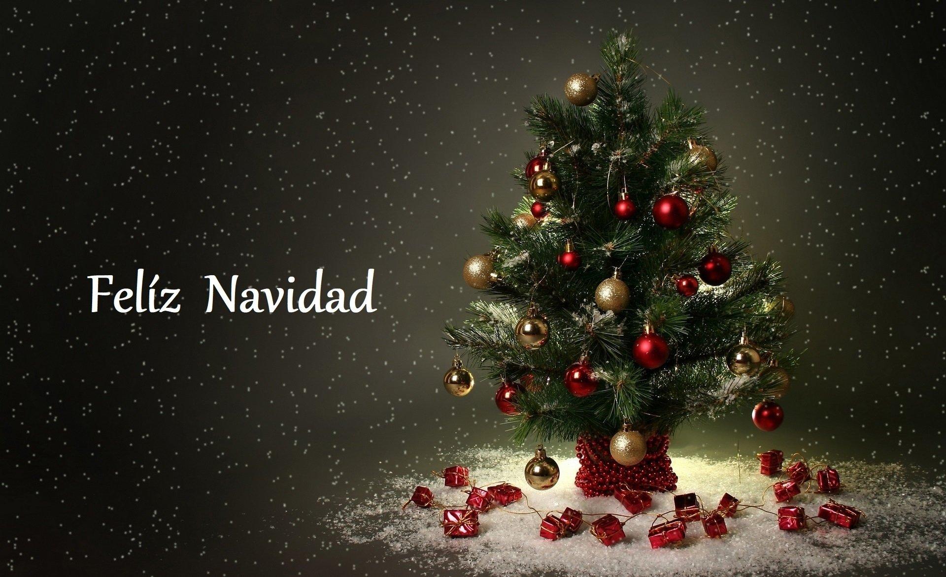 节日 - 圣诞节  Decoration Snow Christmas Tree Merry Christmas 壁纸