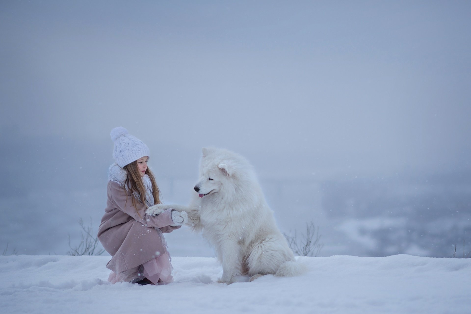 Photography - Child  Girl Little Girl Samoyed Dog Pet Winter Depth Of Field Snow Hat Wallpaper