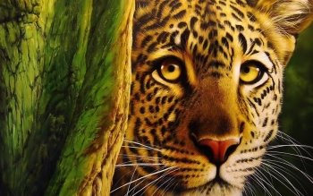 Animal - Leopard Wallpapers and Backgrounds ID : 90742