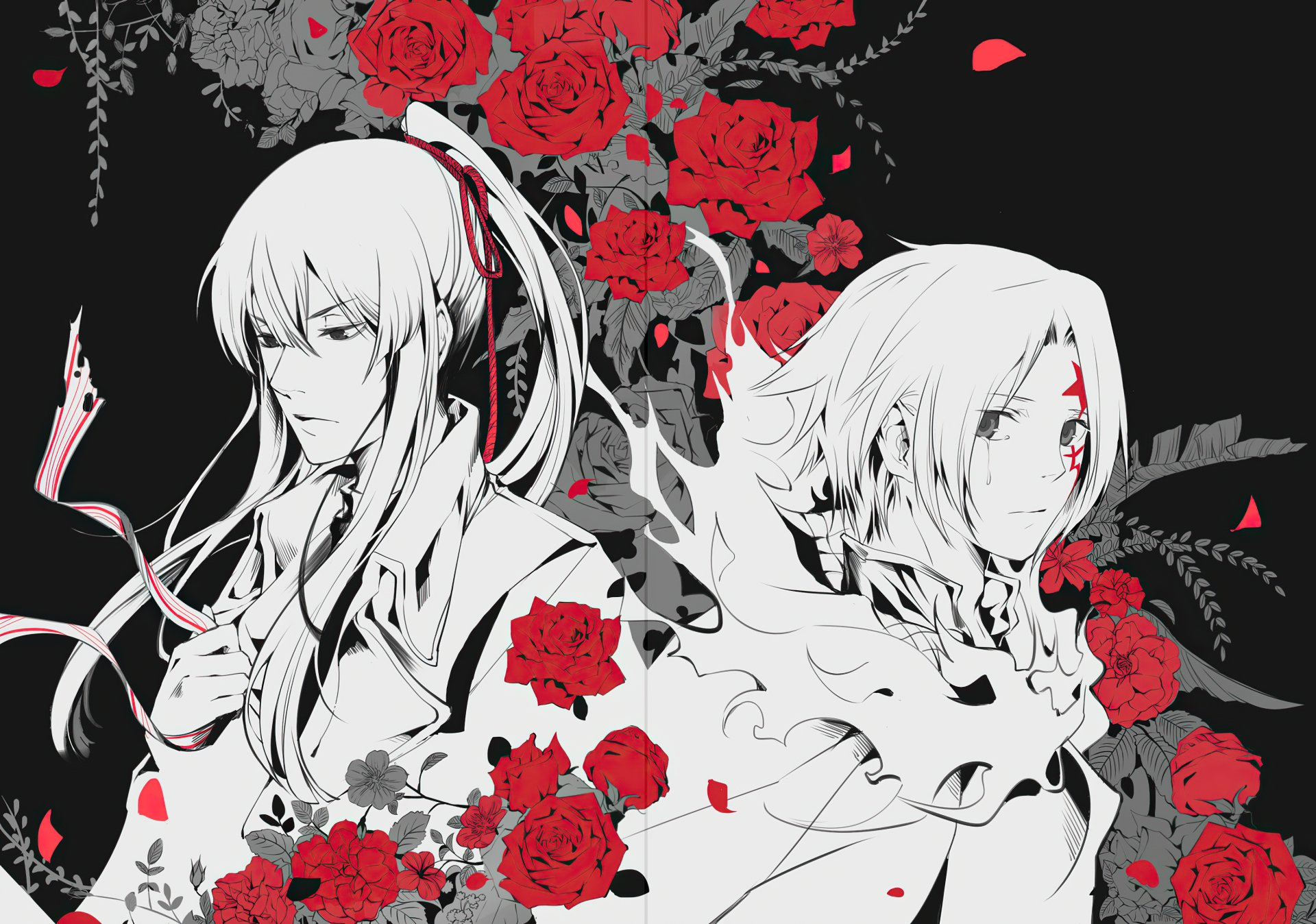 Wallpapers ID:919682