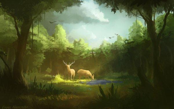 Fantaisie Cerf Animaux Fantastique Animaux Forêt Nature Fond d'écran HD   Arrière-Plan