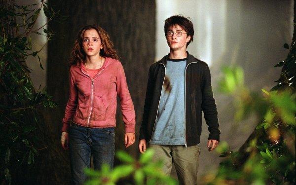 Movie Harry Potter and the Prisoner of Azkaban Harry Potter Hermione Granger HD Wallpaper   Background Image