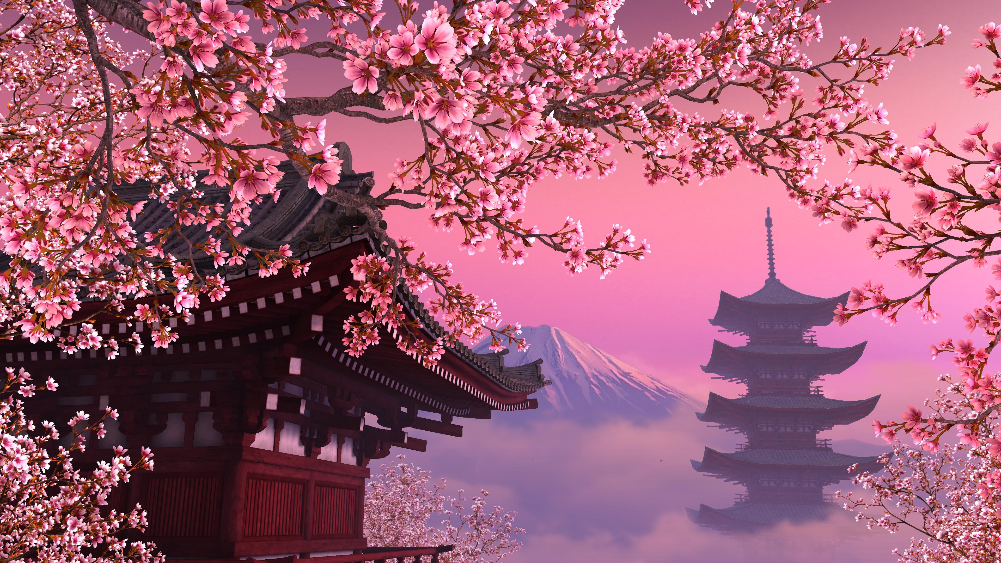 Sakura 4k Ultra Hd Wallpaper Background Image 3840x2160