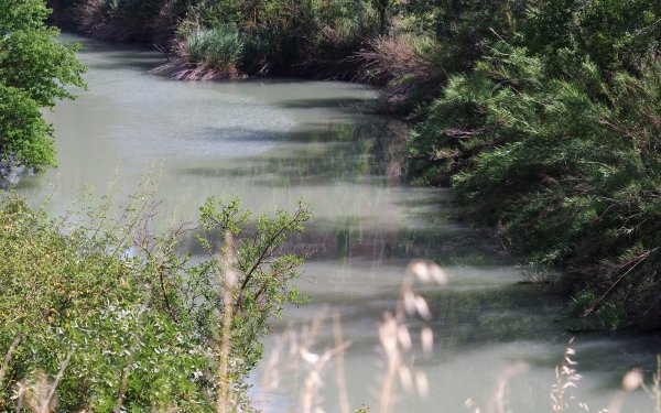 Earth River Nature Water Spain Vegetation Reflection HD Wallpaper | Background Image