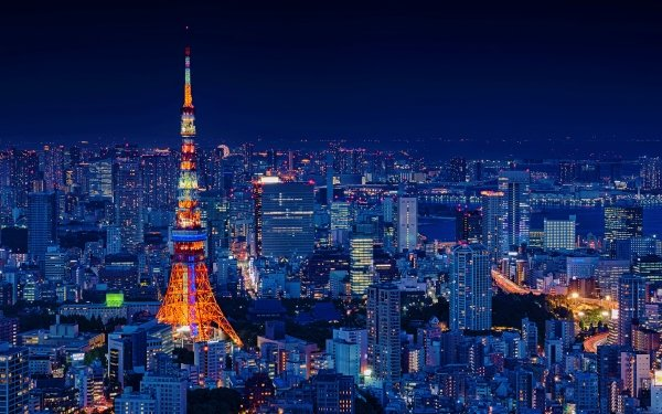 Man Made Tokyo Cities Japan City Night Cityscape Light Tokyo Tower HD Wallpaper | Background Image