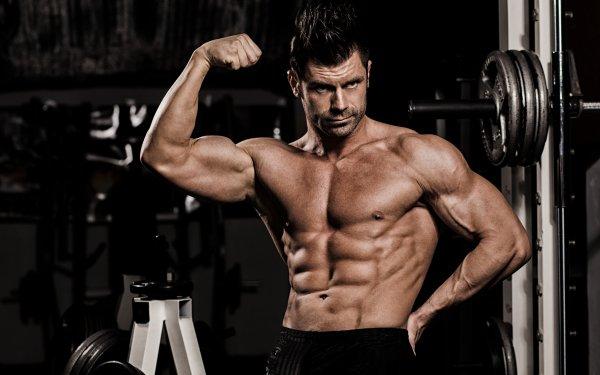 Men Model Muscle Bodybuilding HD Wallpaper | Background Image