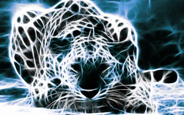 Animal Artistic Fractal Leopard Blue HD Wallpaper   Background Image