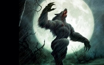 Dark - Werewolf Wallpapers and Backgrounds ID : 96650