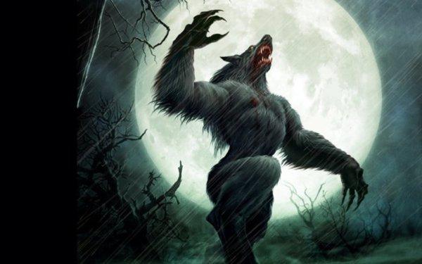 dans fond ecran loup garou thumbbig-96650