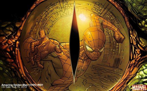 Comics The Amazing Spider-Man Spider-Man Lizard HD Wallpaper | Background Image