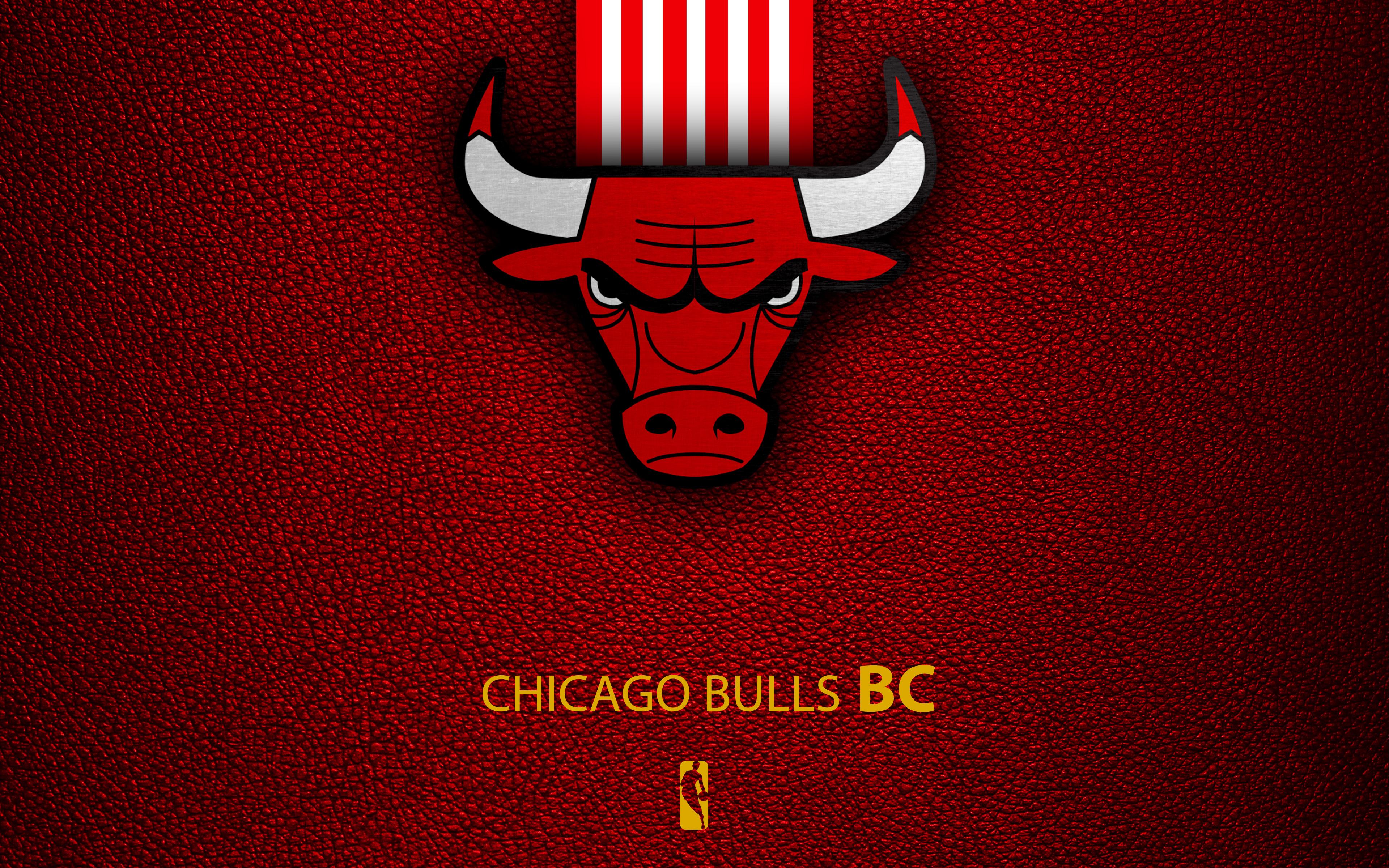 Chicago Bulls Logo 4k Ultra Hd Wallpaper Background Image