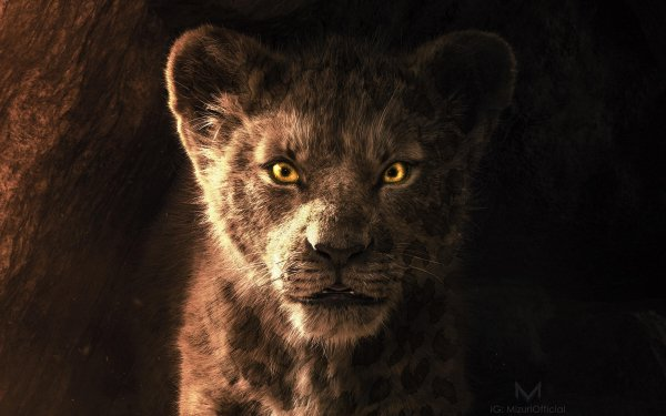 Movie The Lion King (2019) Simba HD Wallpaper | Background Image