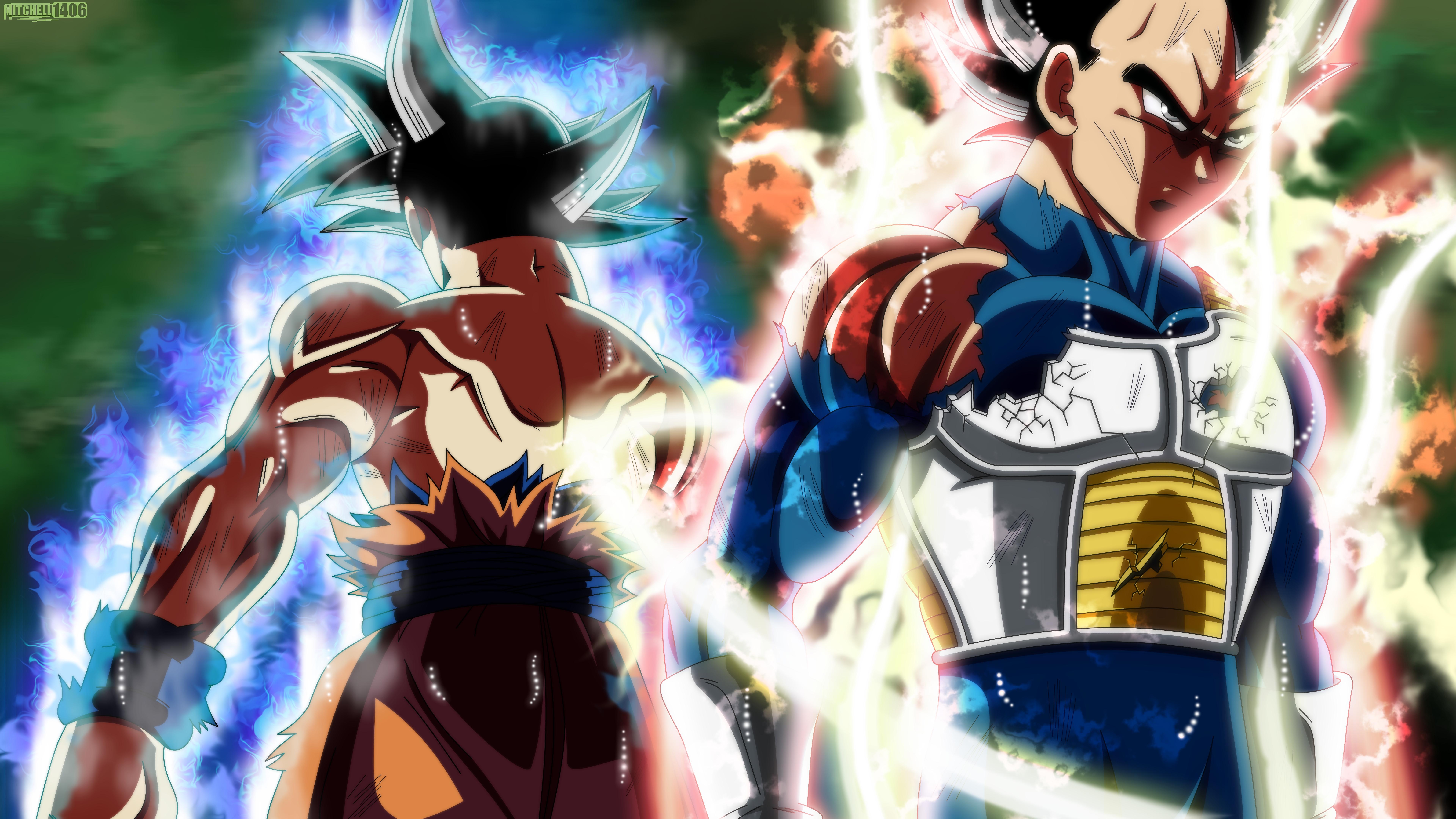 Goku and Vegeta Ultra Instinct 8k Ultra HD Wallpaper | Background Image | 7680x4320 | ID:993769 - Wallpaper Abyss