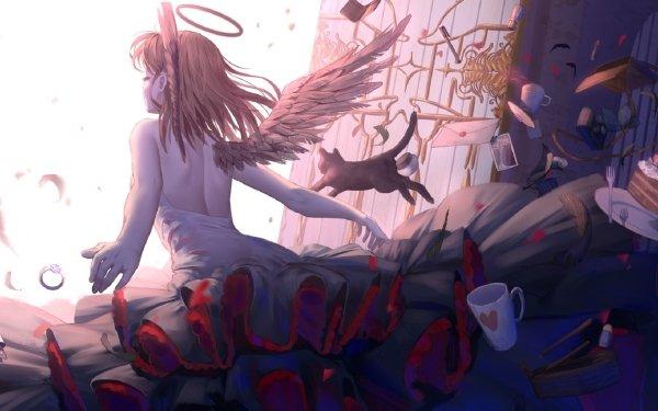 Anime Original Angel Cat HD Wallpaper   Background Image